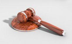 ¿Qué tipos de delitos acoge el derecho penal?